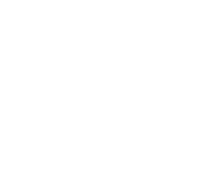 Harpur Shopping Centre Event